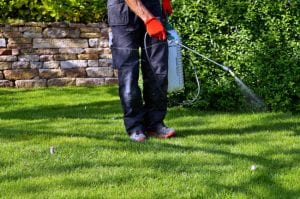 call a professional today for effective pest control